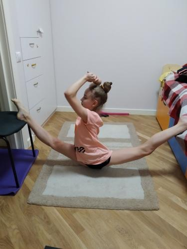 Художественная гимнастика (17)
